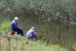 A siker kulcsa a megfelelő horgászbot